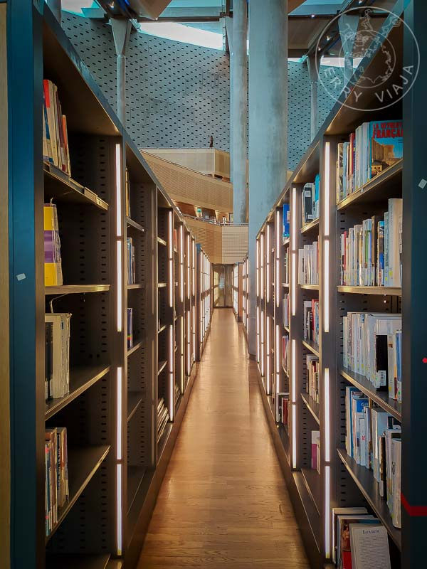 Nueva Biblioteca de Alejandria. Estanterias.