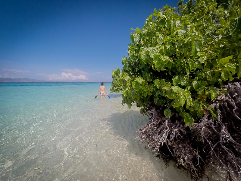 Realizando snorkel en las aguas de la Isla Kanawa, Indonesia