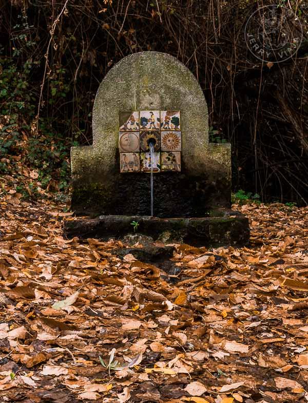 Fuente Gaseosa de Ferreirola, Alpujarra, España