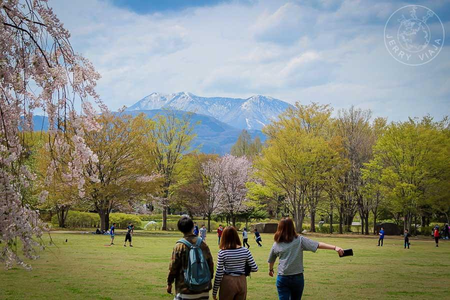 Montañas de Nagano, Japon