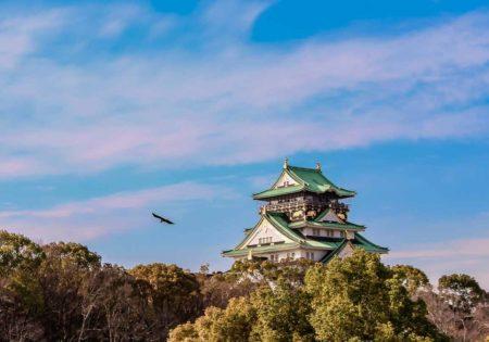 guia que ver en osaka. Castillo de Osaka, Japón